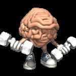 Cara Senam Otak Untuk Merangsang Kecerdasan